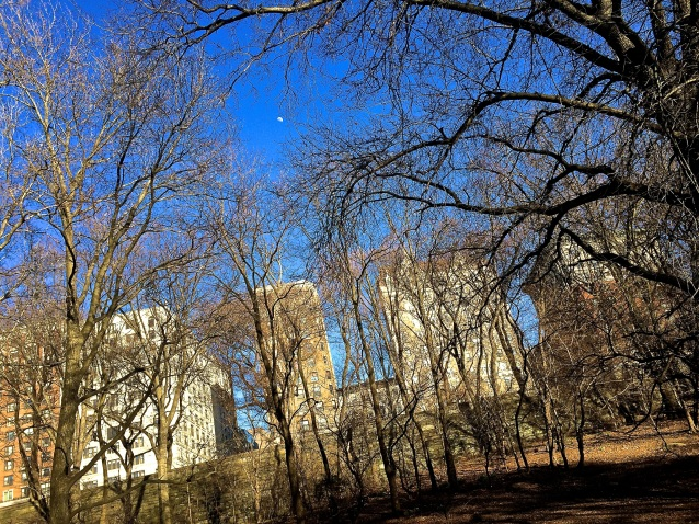 Day 97:3 From Riverside Park