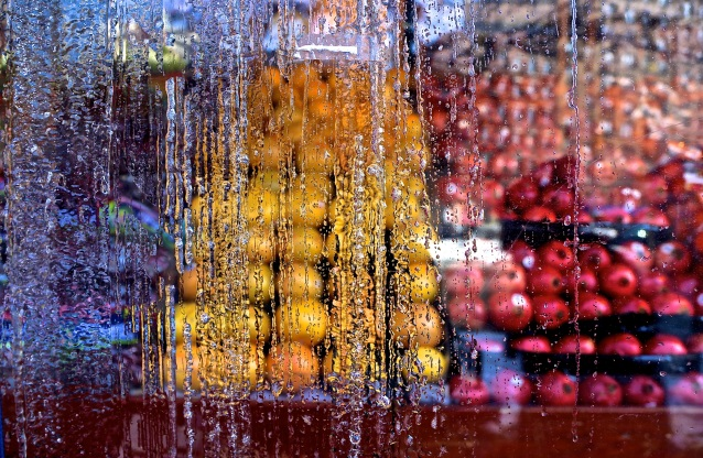 Day 48:4 Through the ice and plastic fruit stand