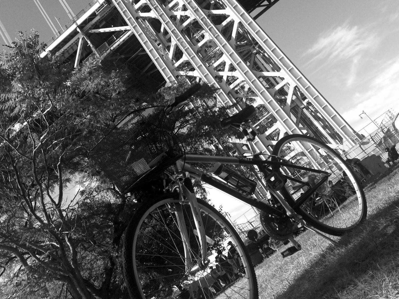 Day 234/4 bike at the bridge