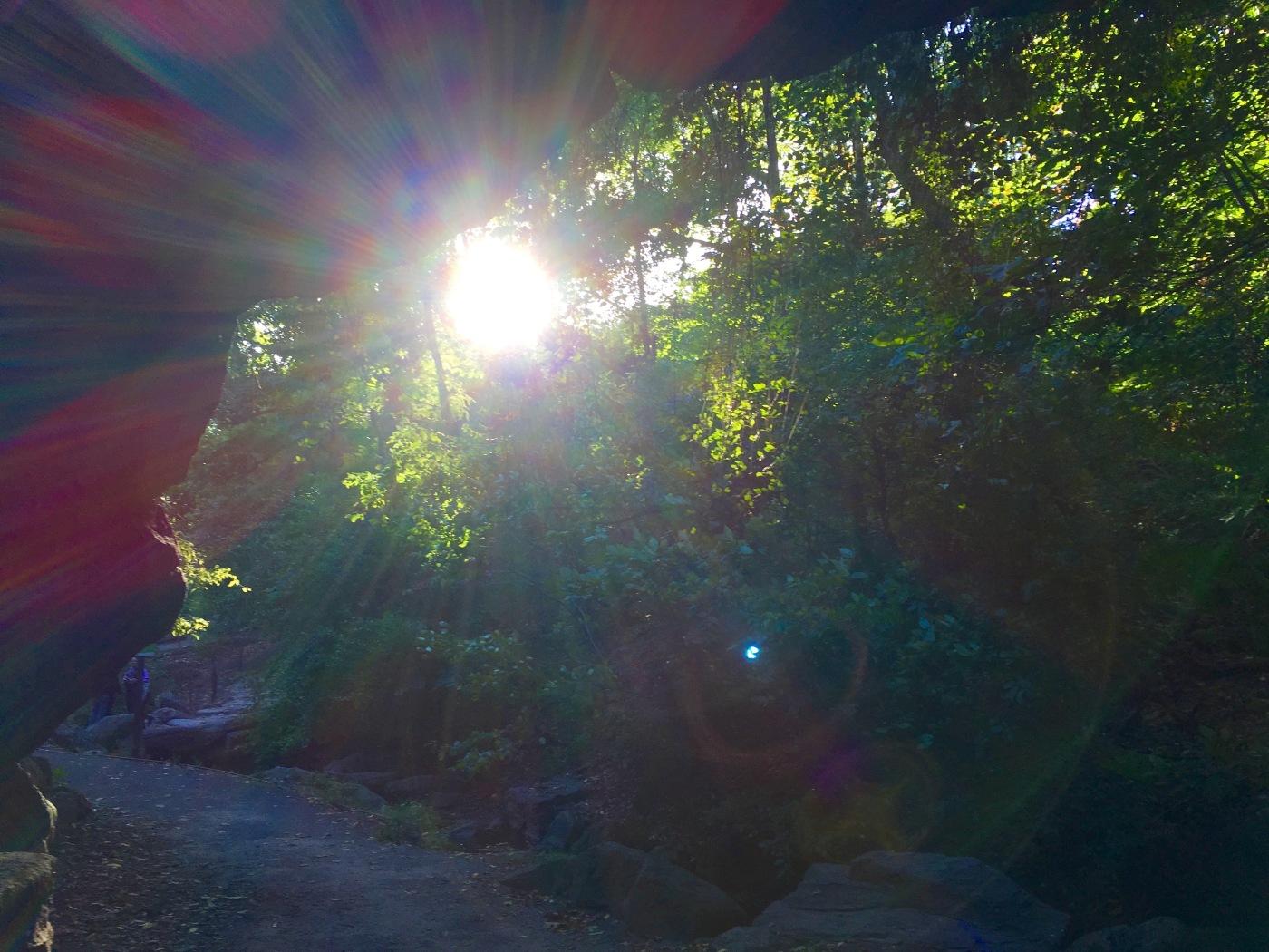 Day 277:4 sunburst